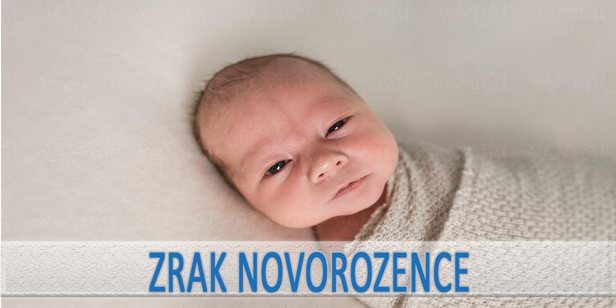 Jak a od kdy vidí novorozenec?